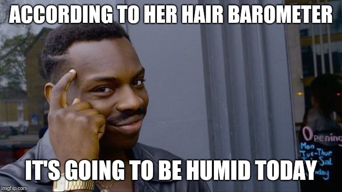 Roll Safe Think About It Meme | ACCORDING TO HER HAIR BAROMETER IT'S GOING TO BE HUMID TODAY | image tagged in memes,roll safe think about it | made w/ Imgflip meme maker