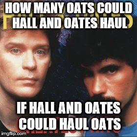 Hall and Oates Hauling Oats | HOW MANY OATS COULD HALL AND OATES HAUL IF HALL AND OATES COULD HAUL OATS | image tagged in hall and oates | made w/ Imgflip meme maker