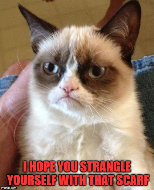 Grumpy Cat Meme | I HOPE YOU STRANGLE YOURSELF WITH THAT SCARF | image tagged in memes,grumpy cat | made w/ Imgflip meme maker