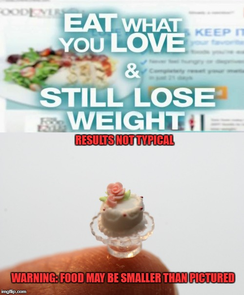 Diet portions | RESULTS NOT TYPICAL WARNING: FOOD MAY BE SMALLER THAN PICTURED | image tagged in funny memes,dieting,cake | made w/ Imgflip meme maker