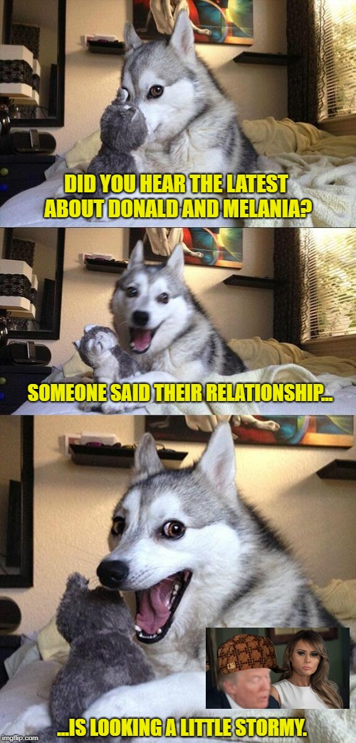 Bad Pun Dog Meme | DID YOU HEAR THE LATEST ABOUT DONALD AND MELANIA? SOMEONE SAID THEIR RELATIONSHIP... ...IS LOOKING A LITTLE STORMY. | image tagged in memes,bad pun dog,scumbag | made w/ Imgflip meme maker