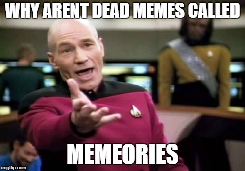 just my 3rd sub cuz i have no idea what to submit | WHY ARENT DEAD MEMES CALLED MEMEORIES | image tagged in memes,picard wtf,ssby | made w/ Imgflip meme maker
