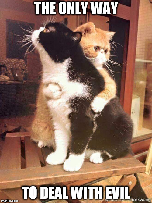 cats hugging | THE ONLY WAY TO DEAL WITH EVIL | image tagged in cats hugging,peace,love,evil,peace and love,hug | made w/ Imgflip meme maker