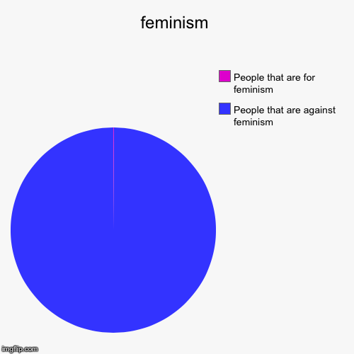 feminism | People that are against feminism , People that are for feminism | image tagged in funny,pie charts | made w/ Imgflip pie chart maker