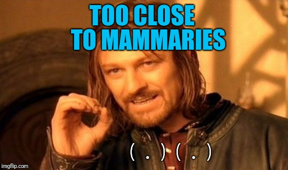 One Does Not Simply Meme | TOO CLOSE TO MAMMARIES (.)(.) | image tagged in memes,one does not simply | made w/ Imgflip meme maker