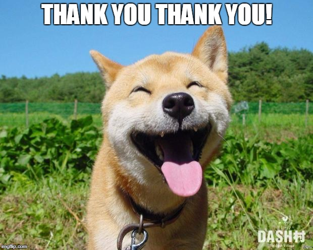Happy Dog | THANK YOU THANK YOU! | image tagged in happy dog | made w/ Imgflip meme maker
