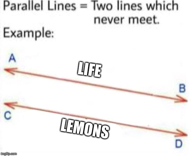 LIFE LEMONS | image tagged in parallel lines | made w/ Imgflip meme maker