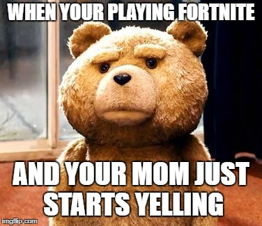 TED | WHEN YOUR PLAYING FORTNITE AND YOUR MOM JUST STARTS YELLING | image tagged in memes,ted | made w/ Imgflip meme maker