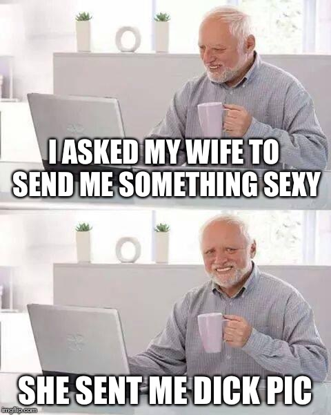 Hide the Pain Harold Meme | I ASKED MY WIFE TO SEND ME SOMETHING SEXY SHE SENT ME DICK PIC | image tagged in memes,hide the pain harold | made w/ Imgflip meme maker