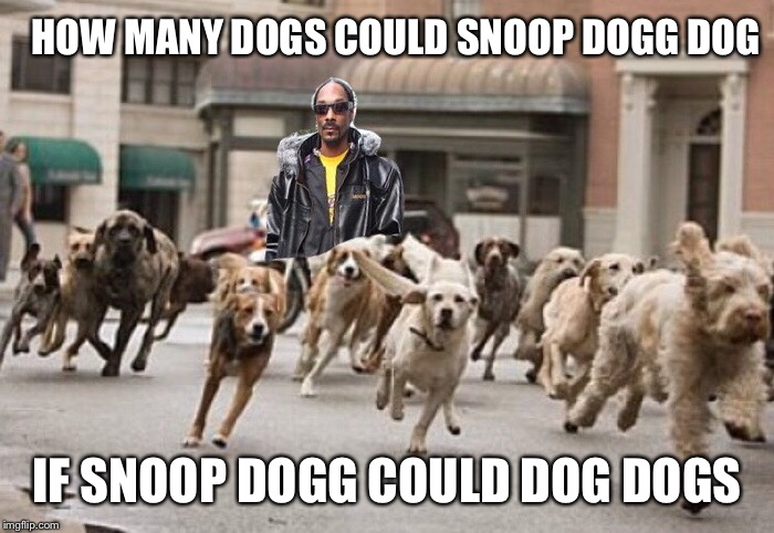 Fo Shizzle my Dizzle! | HOW MANY DOGS COULD SNOOP DOGG DOG IF SNOOP DOGG COULD DOG DOGS | image tagged in snoop dogg,doggos,stupid,rhymes,funny memes | made w/ Imgflip meme maker