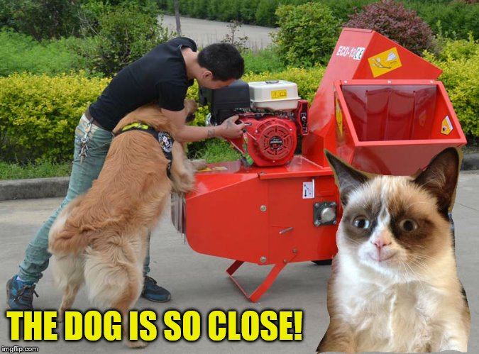 THE DOG IS SO CLOSE! | made w/ Imgflip meme maker