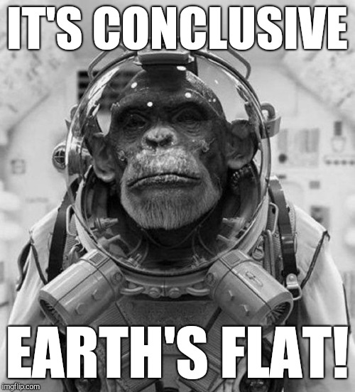 Houston We Have a Problem! | IT'S CONCLUSIVE EARTH'S FLAT! | image tagged in flat earth,planet of the apes,space,nasa hoax,funny memes,funny animals | made w/ Imgflip meme maker