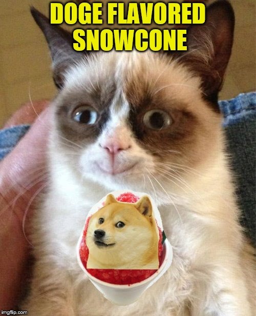 DOGE FLAVORED SNOWCONE | made w/ Imgflip meme maker