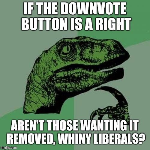 Philosoraptor Meme | IF THE DOWNVOTE BUTTON IS A RIGHT AREN'T THOSE WANTING IT REMOVED, WHINY LIBERALS? | image tagged in memes,philosoraptor | made w/ Imgflip meme maker