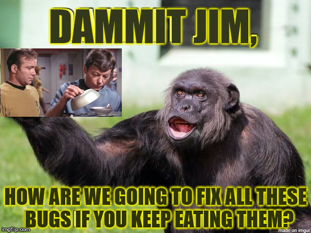Dammit Jim | DAMMIT JIM, HOW ARE WE GOING TO FIX ALL THESE  BUGS IF YOU KEEP EATING THEM? | image tagged in dammit jim | made w/ Imgflip meme maker