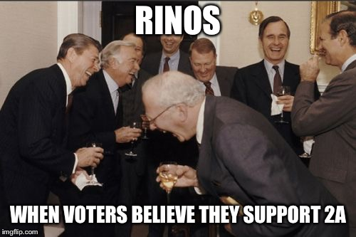 Laughing Men In Suits Meme |  RINOS; WHEN VOTERS BELIEVE THEY SUPPORT 2A | image tagged in memes,laughing men in suits | made w/ Imgflip meme maker