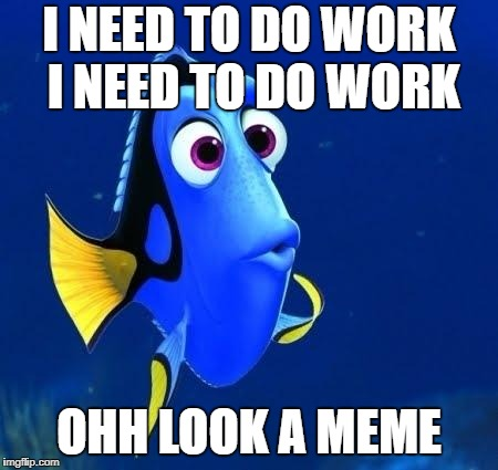 dory forgets | I NEED TO DO WORK I NEED TO DO WORK OHH LOOK A MEME | image tagged in dory forgets,meme | made w/ Imgflip meme maker