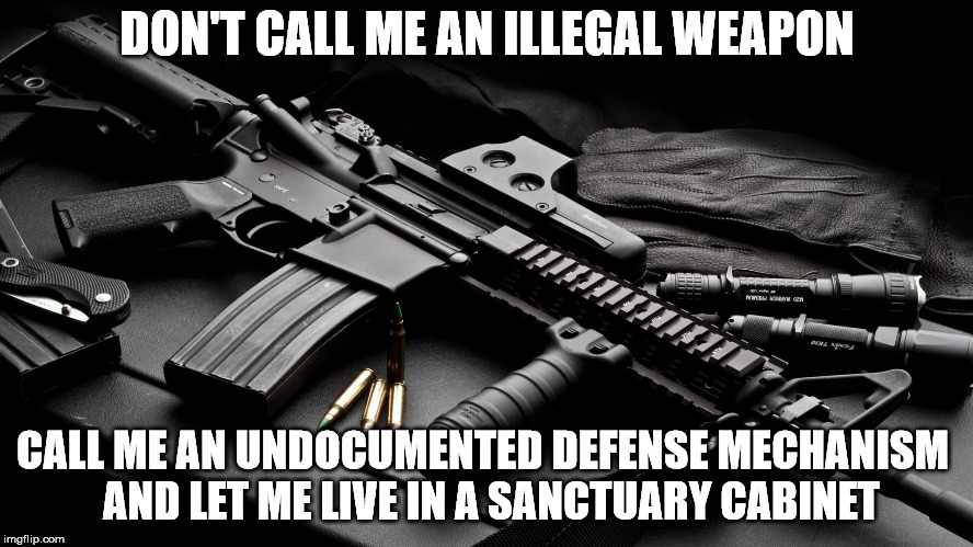 Gun Stuff | DON'T CALL ME AN ILLEGAL WEAPON CALL ME AN UNDOCUMENTED DEFENSE MECHANISM  AND LET ME LIVE IN A SANCTUARY CABINET | image tagged in gun,firearm,weapon,2nd ammendment | made w/ Imgflip meme maker
