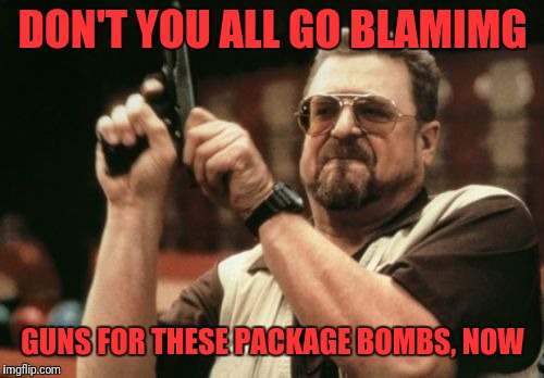 Am I The Only One Around Here Meme | DON'T YOU ALL GO BLAMIMG GUNS FOR THESE PACKAGE BOMBS, NOW | image tagged in memes,am i the only one around here | made w/ Imgflip meme maker