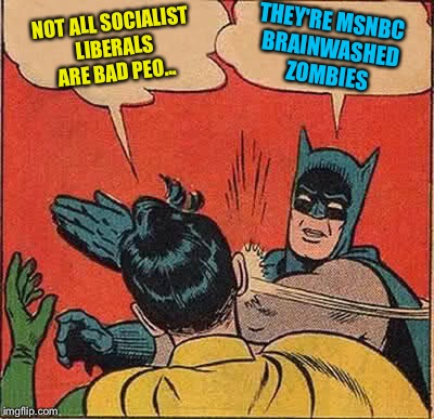 Batman Slapping Robin Meme | NOT ALL SOCIALIST LIBERALS ARE BAD PEO... THEY'RE MSNBC BRAINWASHED ZOMBIES | image tagged in memes,batman slapping robin | made w/ Imgflip meme maker