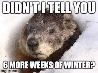 DIDN'T I TELL YOU 6 MORE WEEKS OF WINTER? | image tagged in groundhog in snow | made w/ Imgflip meme maker