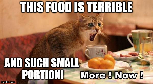 THIS FOOD IS TERRIBLE AND SUCH SMALL PORTION! | made w/ Imgflip meme maker