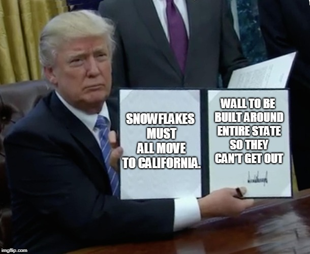 Trump Bill Signing Meme | SNOWFLAKES MUST ALL MOVE TO CALIFORNIA. WALL TO BE BUILT AROUND ENTIRE STATE SO THEY CAN'T GET OUT | image tagged in memes,trump bill signing,maga,snowflakes,build the wall,california | made w/ Imgflip meme maker