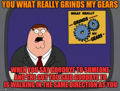 it always drives me crazy | YOU WHAT REALLY GRINDS MY GEARS WHEN YOU SAY GOODBYE TO SOMEONE AND THE GUY YOU SAID GOODBYE TO IS WALKING IN THE SAME DIRECTION AS YOU | image tagged in memes,peter griffin news | made w/ Imgflip meme maker