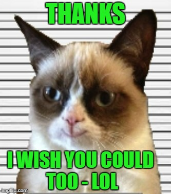 THANKS I WISH YOU COULD TOO - LOL | made w/ Imgflip meme maker