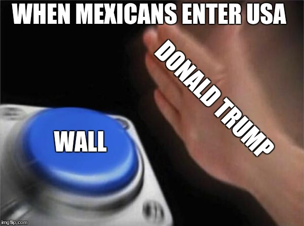 Blank Nut Button Meme | DONALD TRUMP WALL WHEN MEXICANS ENTER USA | image tagged in memes,blank nut button | made w/ Imgflip meme maker