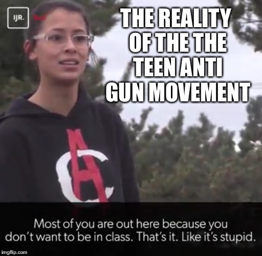 Truth | THE REALITY OF THE THE TEEN ANTI GUN MOVEMENT | image tagged in teenagers,guns,gun control | made w/ Imgflip meme maker