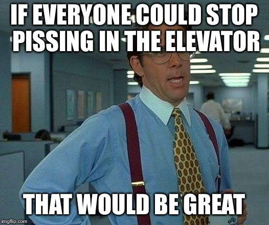 That Would Be Great Meme | IF EVERYONE COULD STOP PISSING IN THE ELEVATOR THAT WOULD BE GREAT | image tagged in memes,that would be great | made w/ Imgflip meme maker