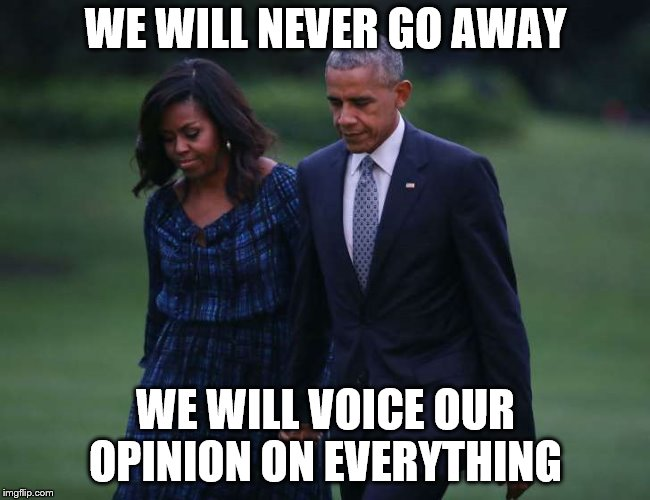 media hogs | WE WILL NEVER GO AWAY WE WILL VOICE OUR OPINION ON EVERYTHING | image tagged in media hogs | made w/ Imgflip meme maker