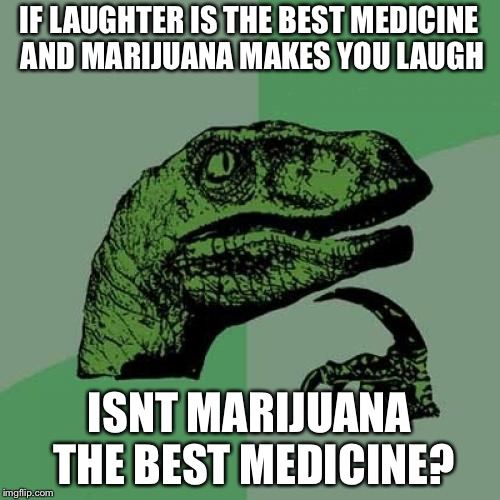 Philosoraptor Meme | IF LAUGHTER IS THE BEST MEDICINE AND MARIJUANA MAKES YOU LAUGH ISNT MARIJUANA THE BEST MEDICINE? | image tagged in memes,philosoraptor,smoke weed everyday,illuminati confirmed | made w/ Imgflip meme maker