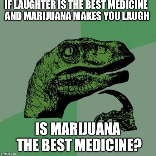 Philosoraptor Meme | IF LAUGHTER IS THE BEST MEDICINE AND MARIJUANA MAKES YOU LAUGH IS MARIJUANA THE BEST MEDICINE? | image tagged in memes,philosoraptor,smoke weed everyday,illuminati confirmed | made w/ Imgflip meme maker