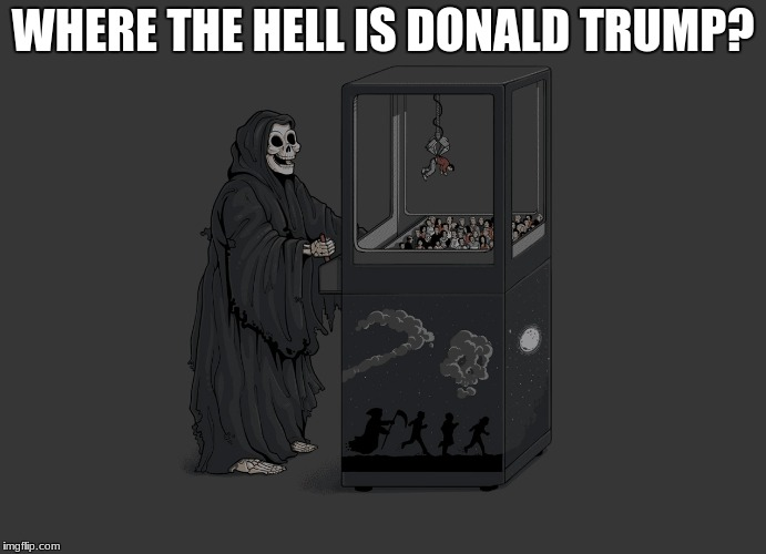 Angel of Death | WHERE THE HELL IS DONALD TRUMP? | image tagged in angel of death | made w/ Imgflip meme maker