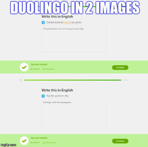 Duolingo in 2 images | DUOLINGO IN 2 IMAGES | image tagged in memes | made w/ Imgflip meme maker