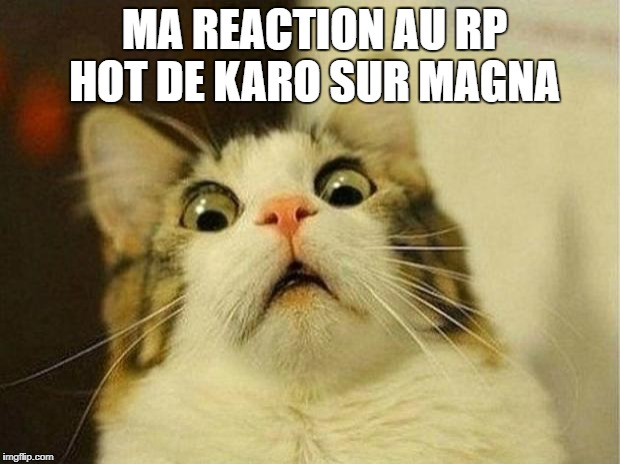 Les memes de la Cité - Page 2 26xj8g
