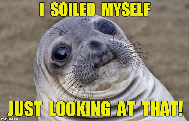 Awkward Moment Sealion Meme | I  SOILED  MYSELF JUST  LOOKING  AT  THAT! | image tagged in memes,awkward moment sealion | made w/ Imgflip meme maker