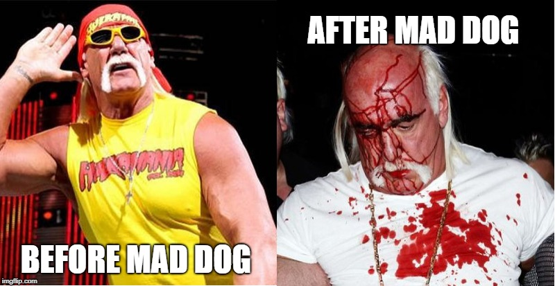 This is what happens... |  AFTER MAD DOG; BEFORE MAD DOG | image tagged in hulk hogan,mad dog | made w/ Imgflip meme maker