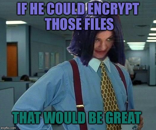 Kylie Would Be Great | IF HE COULD ENCRYPT THOSE FILES THAT WOULD BE GREAT | image tagged in kylie would be great | made w/ Imgflip meme maker