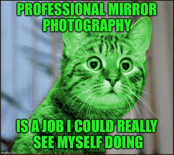 #baddadjokes | PROFESSIONAL MIRROR PHOTOGRAPHY IS A JOB I COULD REALLY SEE MYSELF DOING | image tagged in raycat wtf,memes,bad dad jokes | made w/ Imgflip meme maker