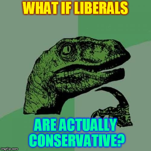 Philosiraptor | WHAT IF LIBERALS ARE ACTUALLY CONSERVATIVE? | image tagged in memes,philosoraptor | made w/ Imgflip meme maker