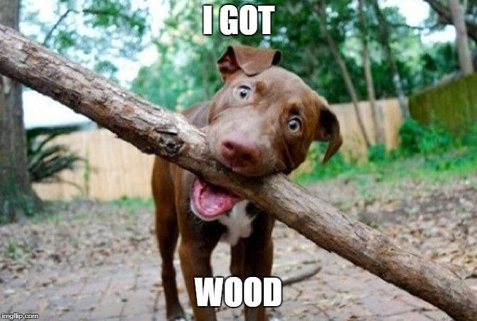 dog stick | I GOT WOOD | image tagged in dog stick | made w/ Imgflip meme maker