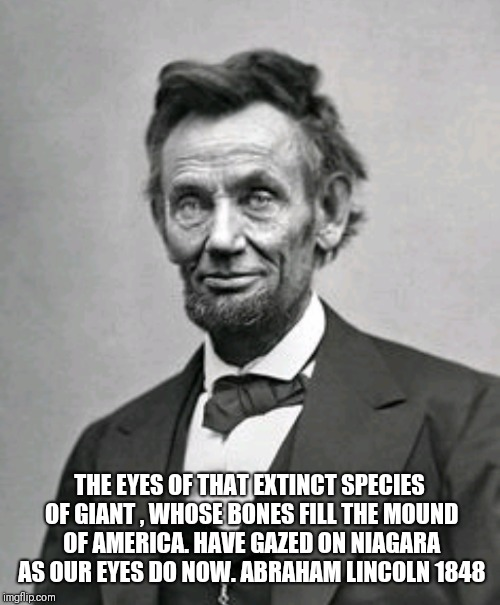 THE EYES OF THAT EXTINCT SPECIES OF GIANT , WHOSE BONES FILL THE MOUND OF AMERICA. HAVE GAZED ON NIAGARA AS OUR EYES DO NOW. ABRAHAM LINCOLN | image tagged in abraham lincoln,giants | made w/ Imgflip meme maker