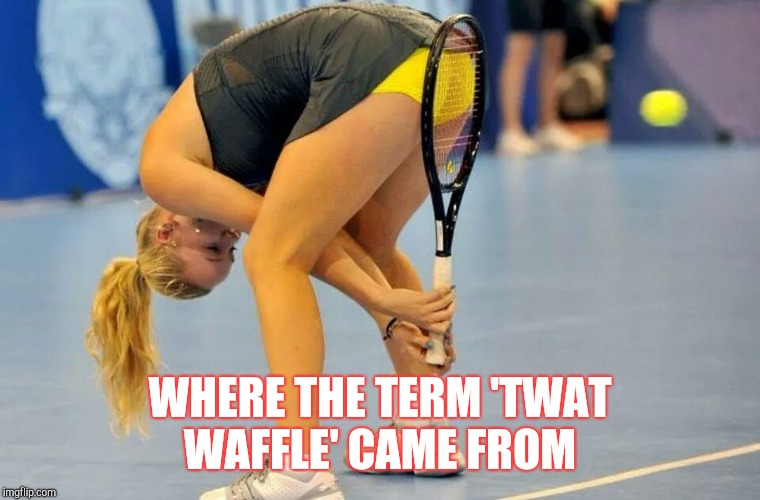 WHERE THE TERM 'TWAT WAFFLE' CAME FROM | image tagged in twat | made w/ Imgflip meme maker