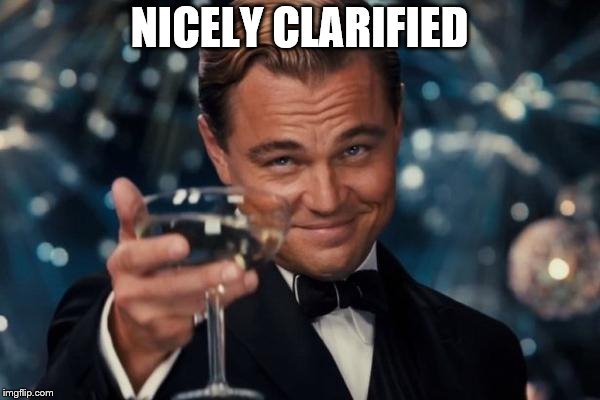 Leonardo Dicaprio Cheers Meme | NICELY CLARIFIED | image tagged in memes,leonardo dicaprio cheers | made w/ Imgflip meme maker