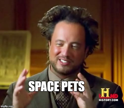 Ancient Aliens Meme | SPACE PETS | image tagged in memes,ancient aliens | made w/ Imgflip meme maker
