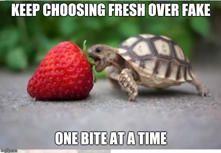 Healthy eating baby turtle  | KEEP CHOOSING FRESH OVER FAKE ONE BITE AT A TIME | image tagged in healthy baby turtle,fresh food,nutrition,healthy,nutritious,whole food | made w/ Imgflip meme maker