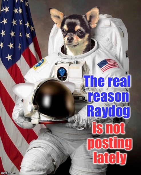 Outer space internet is still spotty for Astrodog. | . | image tagged in memes,raydog,astrodog,internet,funny memes,drsarcasm | made w/ Imgflip meme maker